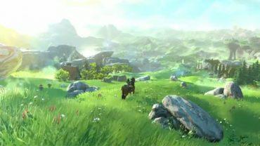 Zelda Wii U Field